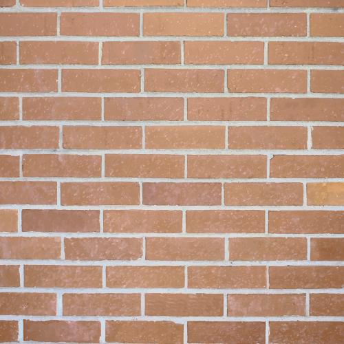 mockup ecopias papel de parede tijolos 1